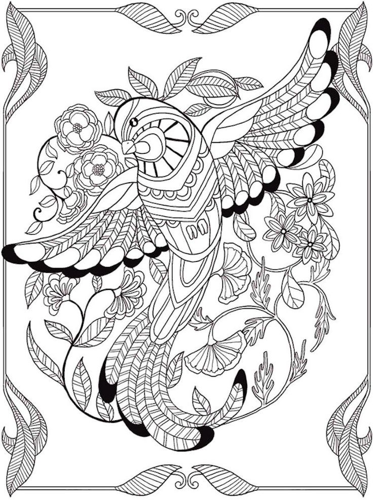 Dover  Birds of Paradise Coloring  Page 3