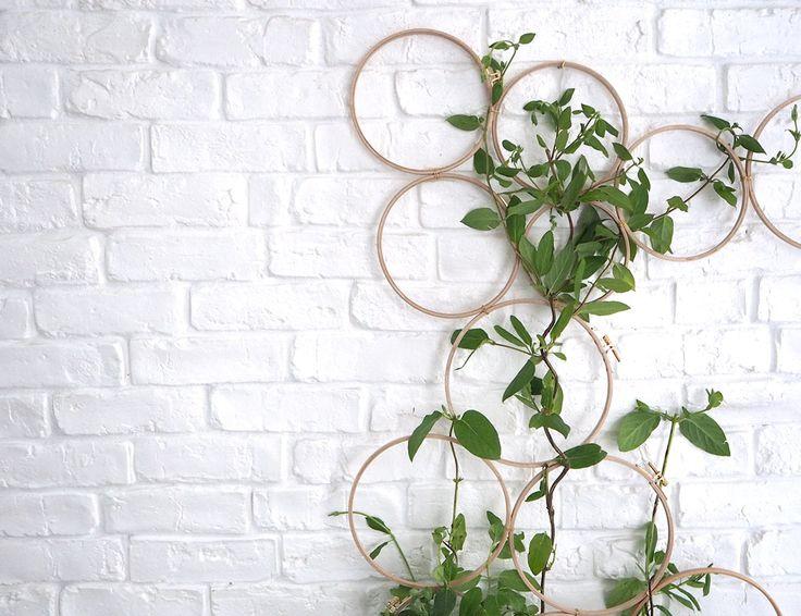 plantes grimpantes création DIY avec pinterest et Marie claire idée