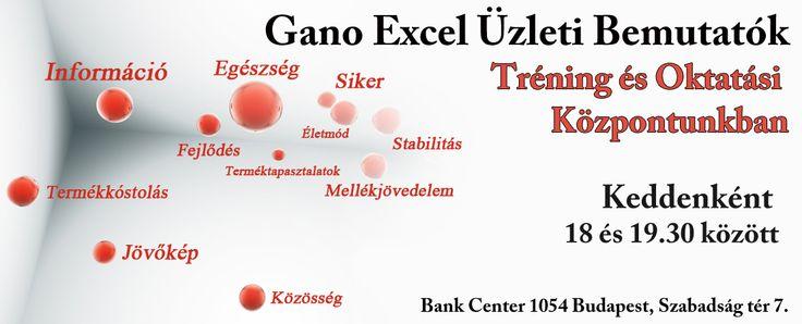 Ha kedd, akkor Gano Excel Üzleti Bemutató!