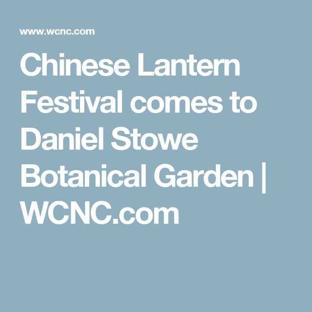 Best 25 Chinese Lanterns Ideas On Pinterest Chinese Paper Lanterns Chinese Lanterns Wedding