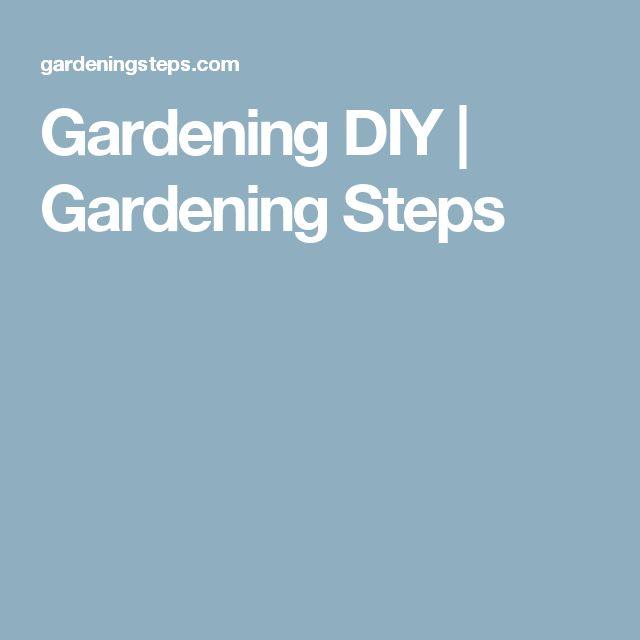 Gardening DIY | Gardening Steps
