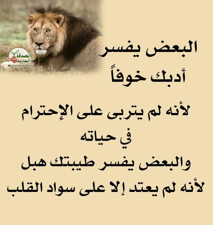 Pin By Azhar Alkenany On صور In 2021 Arabic Quotes Quotes Lat