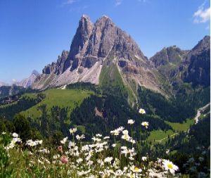 Sognare una montagna   Sognare una montagna,  sognare delle montagne o sognare di stare in montagna può assumere diversi significati anche in relazione ai simboli presenti ciò determinare dei