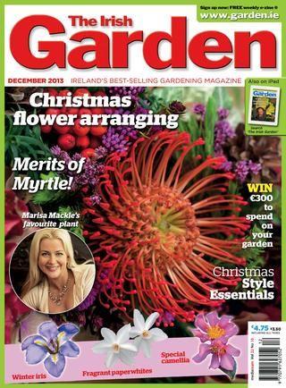 The Irish Garden - December issue