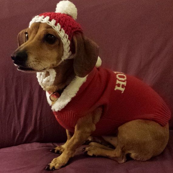 Crocheted Dachshund Santa Paws beanie by BlancasCrafts on Etsy