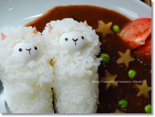 alpaca curry #bento