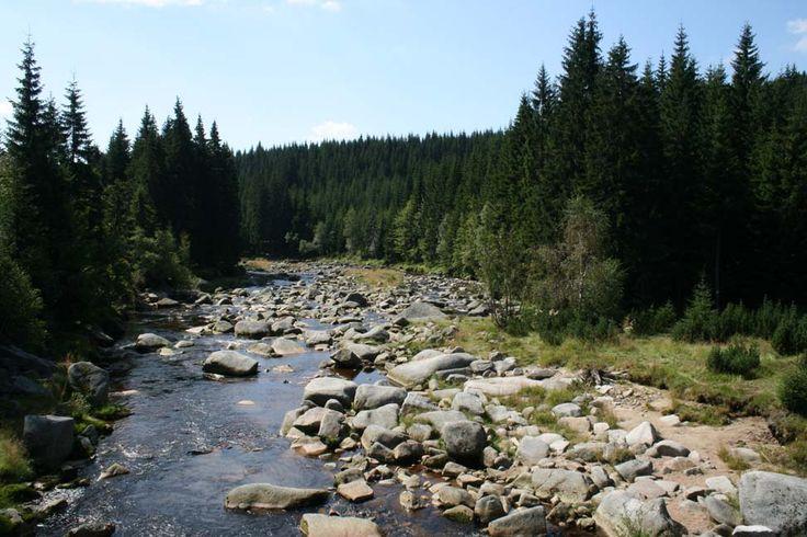 Karkonosze National Park - Izera #Karkonosze #Mountains #Poland