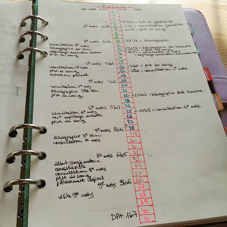 A insérer dans son agenda ou carnet de grossesse : les échéances, le calendrier personnalisé : à gauche, les différents rendez-vous théoriques ; au centre, le nombre de semaines avec différentes couleurs pour distinguer les mois et les trimestres ; à droite, mes rendez-vous en rapport avec la grossesse  ! #bulletjournal #printable #pregnancy #grossesse #bujo