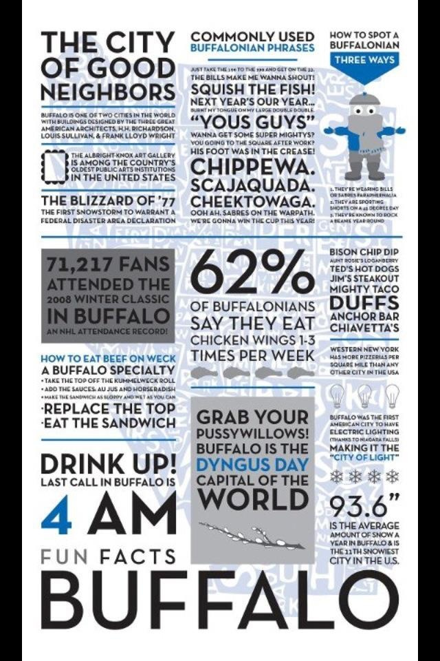 High Quality Items Similar To Buffalo Fun Facts Poster On Etsy