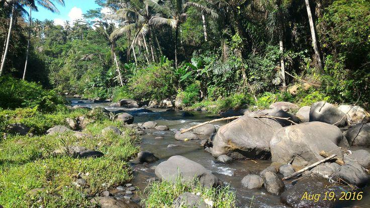 Ayung River, Bali