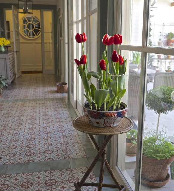 the lime walk: HAVING FUN WITH SPRING BULBS  Just when we think t...