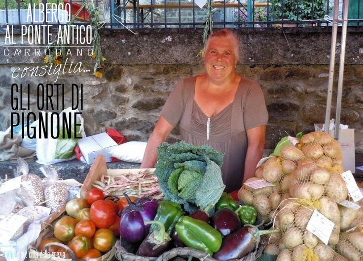 Albergo Al Ponte Antico Consiglia - Gli Orti di Pignone - Val di Vara - La Spezia.png