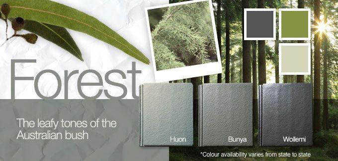 Monier Colour Palette – Forest
