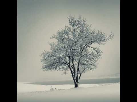 Gute Nacht aus Schuberts Winterreise - YouTube