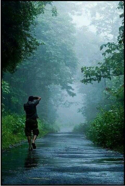 Early in the morning.... Kerala. > India