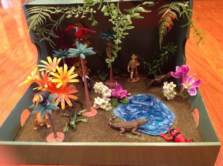 Make an Ecosystem Diorama Dioramas Diorama Biomes