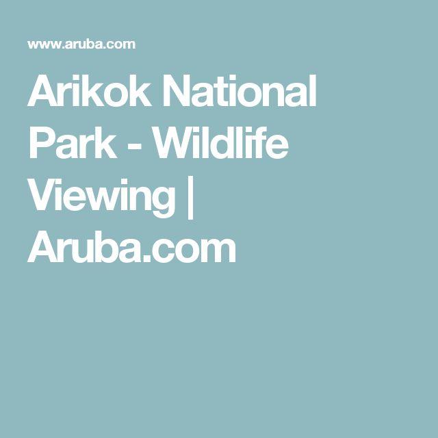 Arikok National Park - Wildlife Viewing   Aruba.com