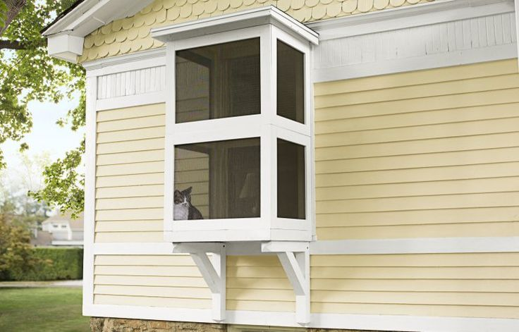 Build your cat a porch of its own - a Catio!