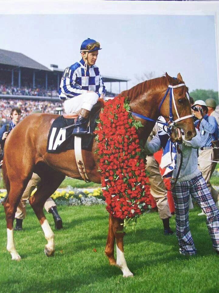 Triple Crown Winner Secretariat wearing his Kentucky Derby roses proudly.
