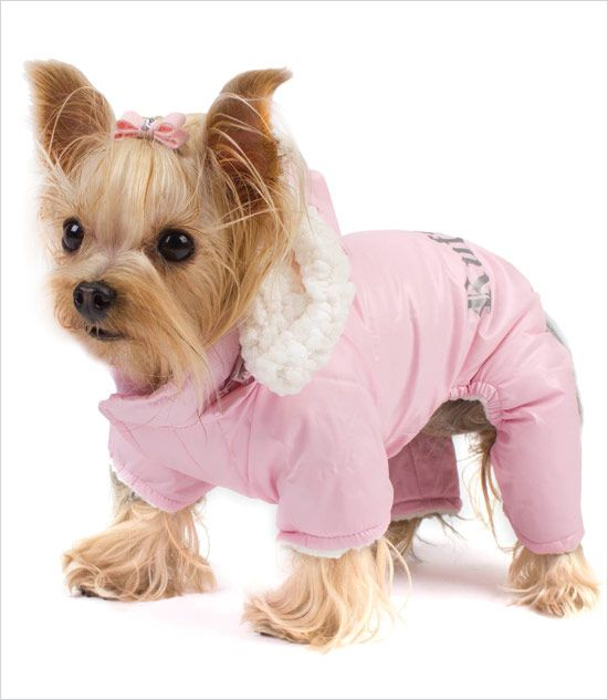 Pink Winter Dog Snowsuit Baby It S Cold Outside