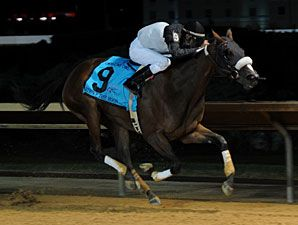 Strike The Moon(2008)Malibu Moon- Star Kell By Star De Naskra. 28 Starts 4 Wins 6 Seconds 4 Thirds. $658,354. Won 2011 Charles Town Oaks, 2nd Delaware Oaks(G2), 2012 Thoroughbred Club Of America(G2).