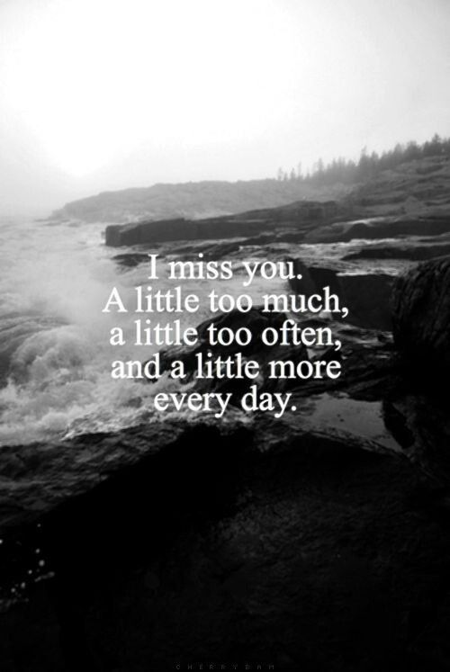 Miss you so much it hurts. Guess you have no time to miss me :(