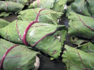 Beet Leaf Cabbage Rolls with a Creamy Dill Sauce - oh my Looks like an INERESTING SITE