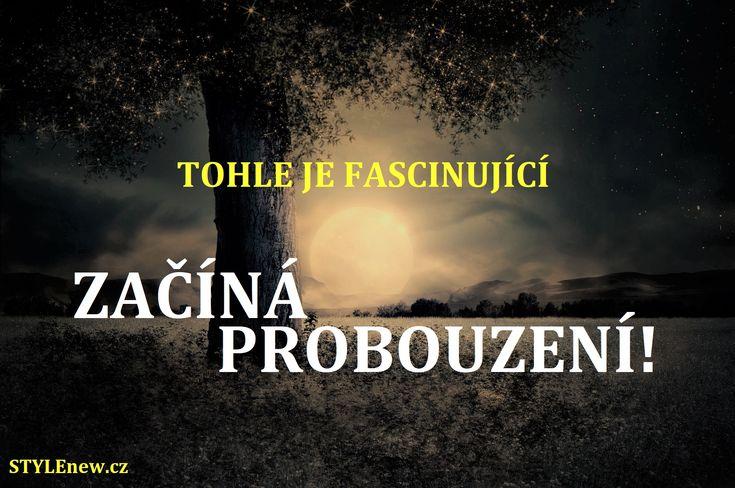 STYLEnew.cz - lifestylové on-line čtení pro radost