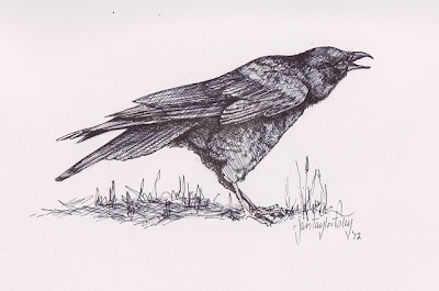 """""""One Crow- Sorrow"""" a pen and ink sketch."""