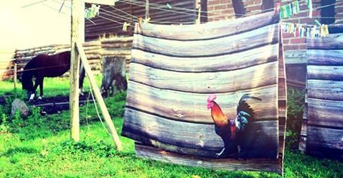 http://wnetrzeiogrod.pl/wnetrza-2/sypialnia-wnetrza-2/drewniana-posciel-kogutem-idealna-jesien.html