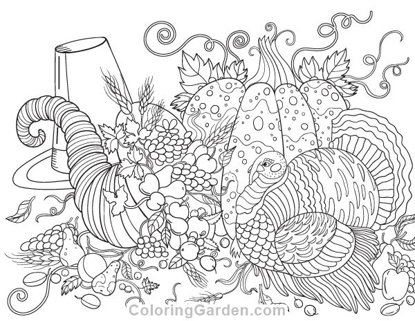 Thanksgiving Coloring Pages Free Pdf : Free printable thanksgiving adult coloring page download