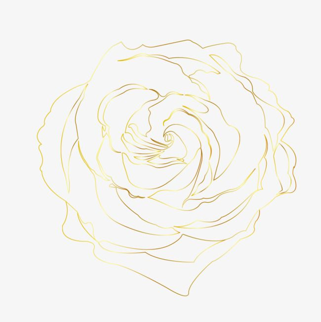 Rose Line Rose Clipart Line Png Transparent Clipart Image And
