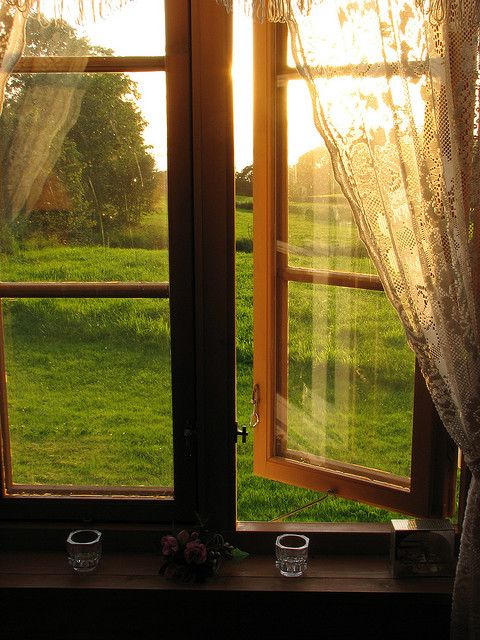 Lace Curtains, The View, Open Windows, Cottages, Country Life, Summer Breeze, Sun, Mornings Lights, Windows View