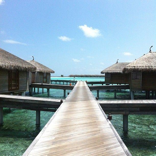 Äntligen framme på #constance moofushi på #maldiverna vilken water villa ska man välja? Läs mer om Maldiverna på http://www.ving.se/maldiverna/maldiverna