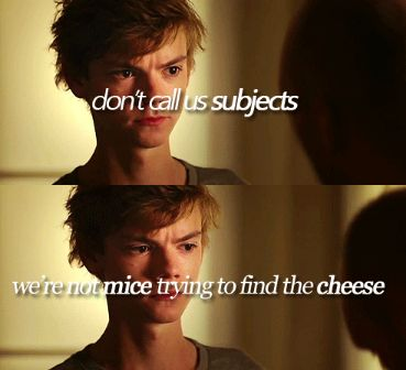 """""""Don't call us subjects. We're not mice trying to find the cheese."""" TMR Trilogy - The Death Cure - Newt Quote"""