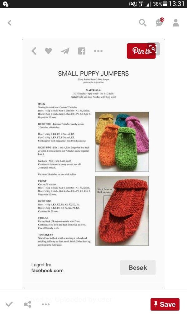 Mejores 62 imágenes de dogs en Pinterest   Perros pequeños, Crochet ...