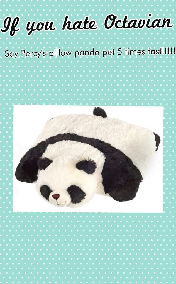 I was reading The Son of Neptune to my little sister in her room. When Octavian killed Percy\u0027s panda she grabber her panda pillow pet and screamed \