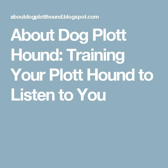 About Dog Plott Hound: Training Your Plott Hound to Listen to You