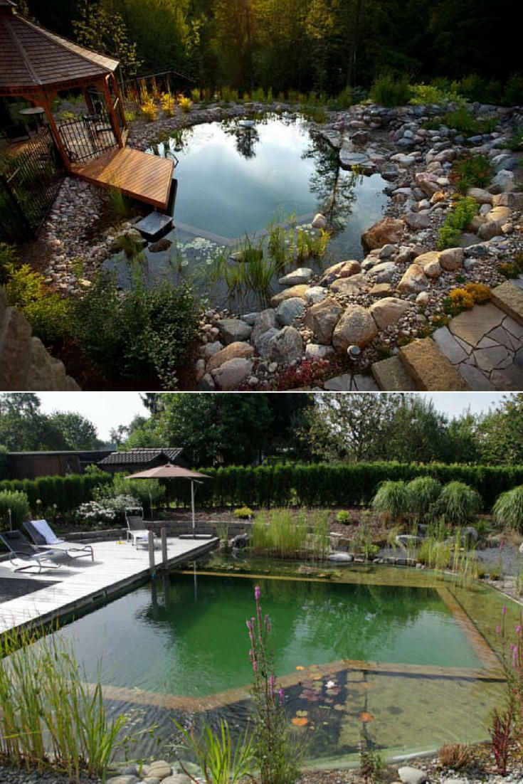 How To Build An Organic Natural Pool Gardendecor Diygardenideas Flowers Gardendesign Gardenidea Natural Pool Water Fountains Outdoor Swimming Pool House Backyard diy natural pool