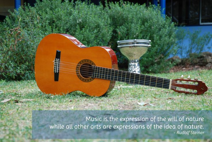 Music is the expression of the will of nature while all other arts are expressions of the idea of nature.