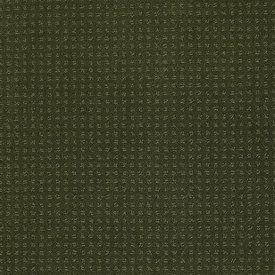 Color: 00301 Kelly In Savannah - EA024 Shaw ANSO Nylon Carpet Georgia Carpet Industries