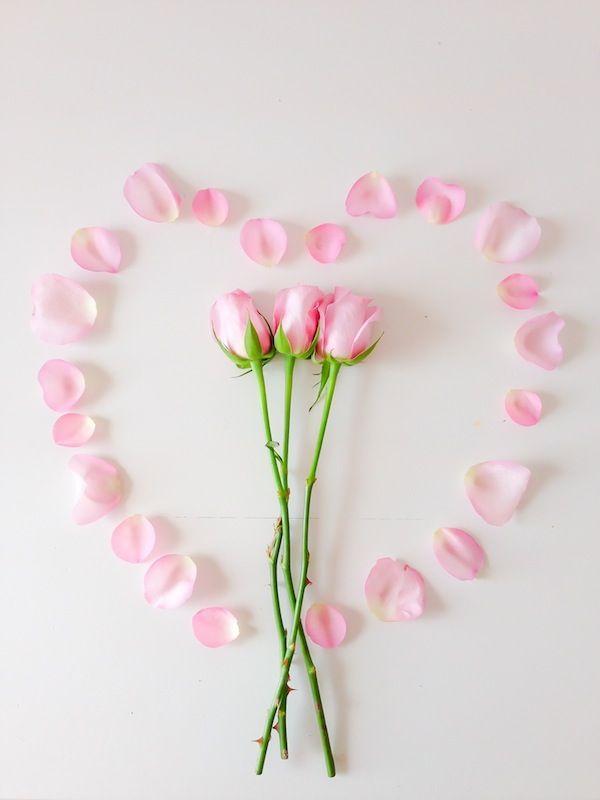Heart rose♡