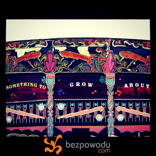 Something to grow about.   BezPowodu.com  