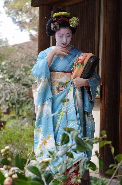geisha-kai:Kimiaya of Miyagawacho as maiko in lovely blue kimono (SOURCE)She's now a geiko - one of the best in her hanamachi!