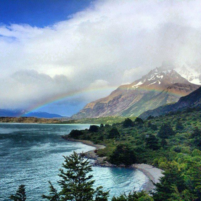Celebrate spring with blue waters, pink skies, and flowers in bloom, like here in Torres del Paine National Park, #Chile.