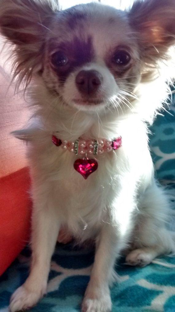 Regalo de mascotas perro/gato Collar collar de princesa rosa