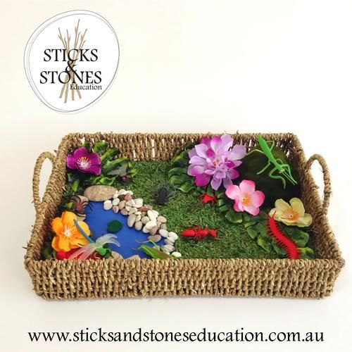 Insect's Garden in a Basket