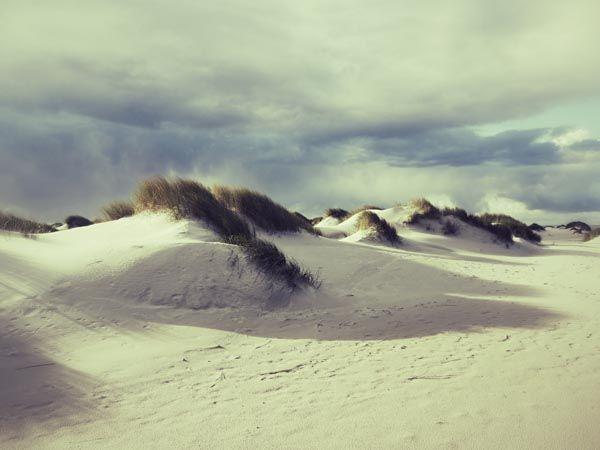 Island Amrum http://meerblog.de