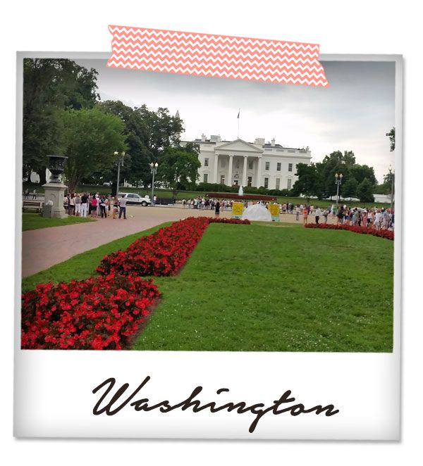#telaraccontocosi Washington ME creativeinside