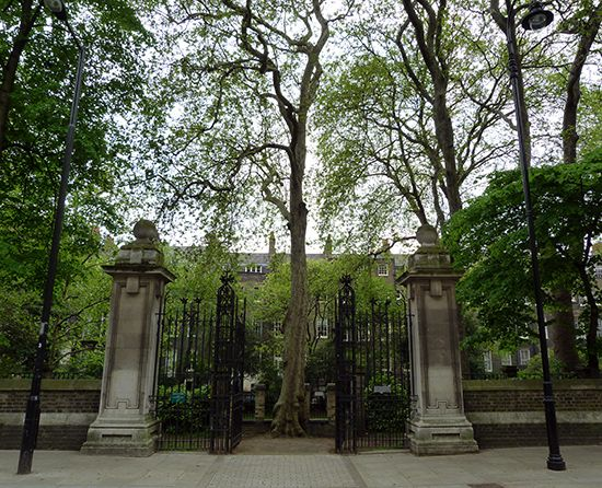 Malet Street Gardens in Bloomsbury, Greater London